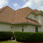 Tile roof after cleaning